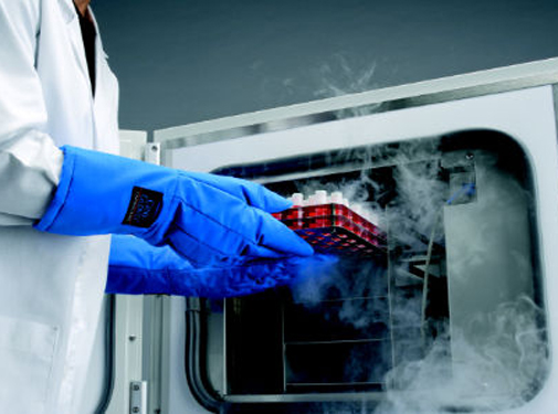 CryoMed Controlled-Rate Freezers