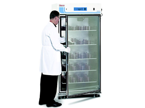 Large-Capacity Reach-In CO2 Incubator